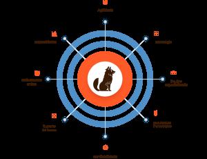 Infográfico das competências da empresa Guarda Site