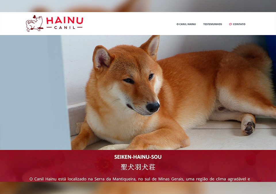 Hainu Canil Shiba Inu Portfólio Guarda Site